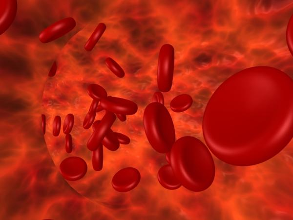 Could hemoglobin blood test or any kind of blood test show cancer if the person has in it?