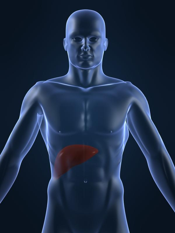 Does liver ultrasound detect cirrhosis of liver or other liver damage?