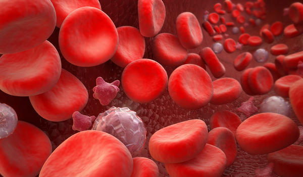 What are the symptoms of beta thalassemia?