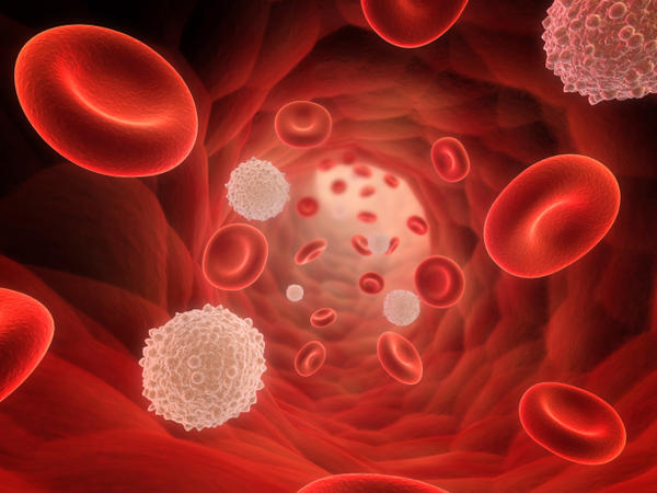Is it possible to get a nursing diagnosis for leukocytosis?