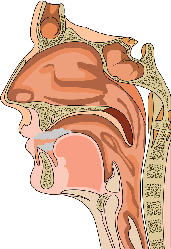 What gets the mucus out of the frontal sinuses?