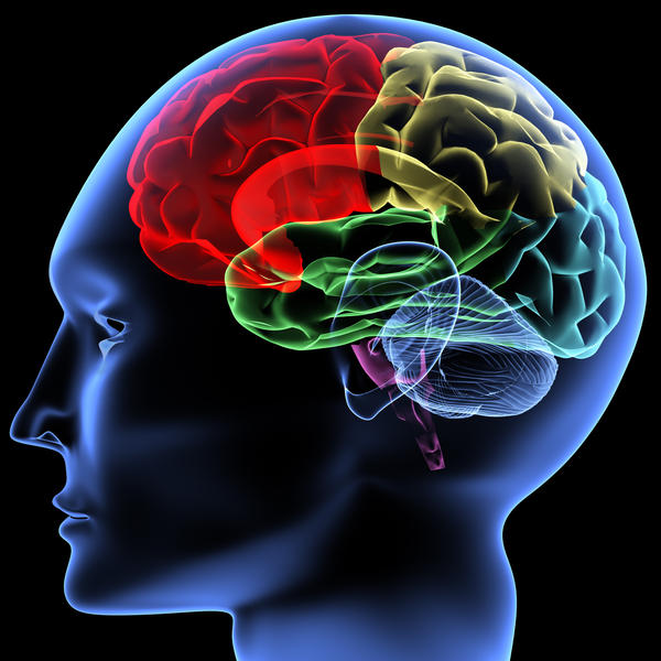 Is there a typical cause for traumatic brain injury?