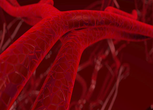 What are the main symptoms of deep vein thrombosis?