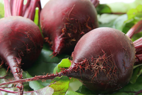 Can pregnant women eat beetroot?