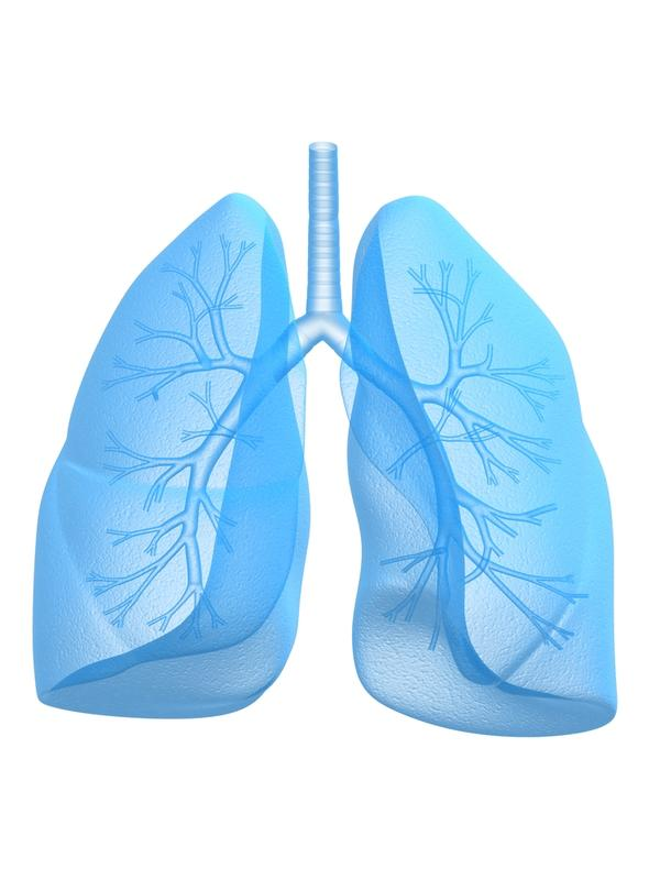 What is the difference between chronic bronchitis and acute bronchitis?