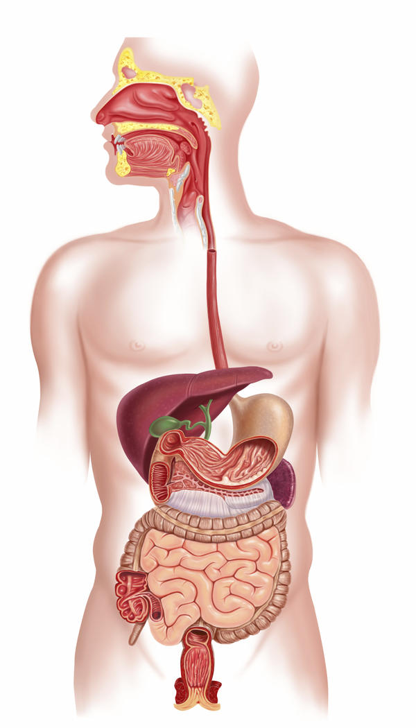 I suffer from stomach distention and non stop burping. I Did an EGD showing gastritis.