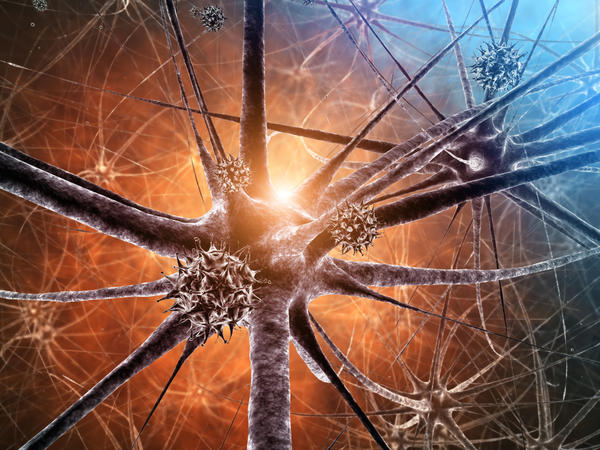 What is the definition or description of: Neurodegenerative diseases?