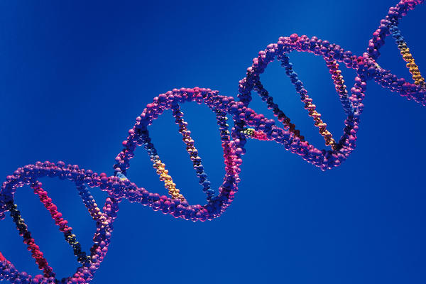 How are genetic disorders diagnosed?