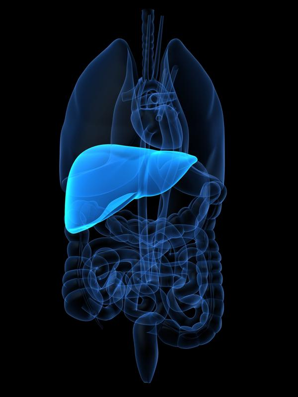 Gallbladder scan came back w/liver echogenic w/area of low echogenicity in the right hepatic lobe measuring 2.4x2.7x2.5 cm & liver enlarged to 24.2 cm?
