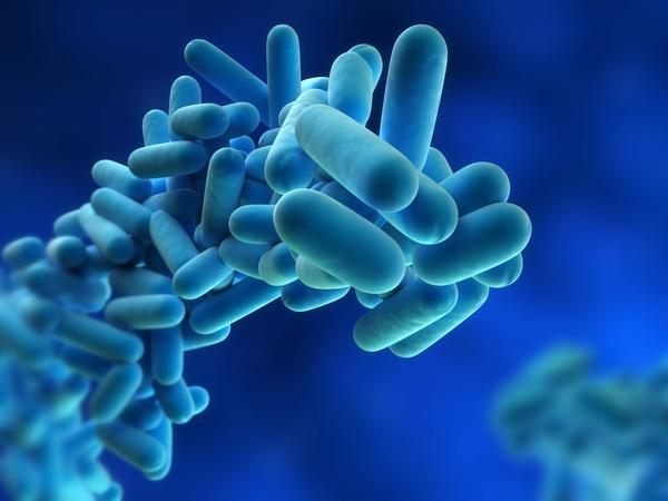 Is it true that flesh eating bacteria is actually pretty common?