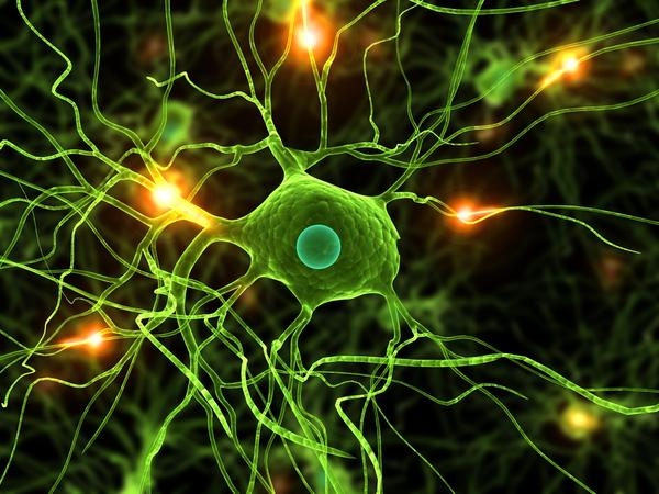 Can coq10 help neuropathy?
