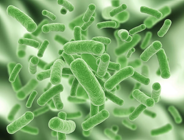 What causes bacterial infections?