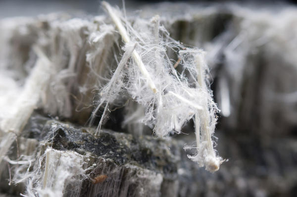 Asbestos can cause mesothelioma and asbestosis, but how common are those diseases in those heavily exposed?