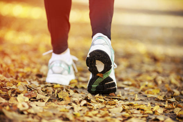 Will walking 2.5 miles a day help me lose weight?