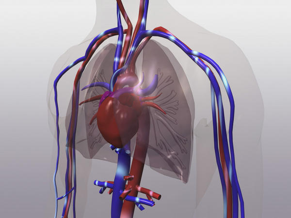 Is it common for blood vessels to burst in lungs?