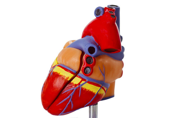 What happens when your heart valves enlarge?