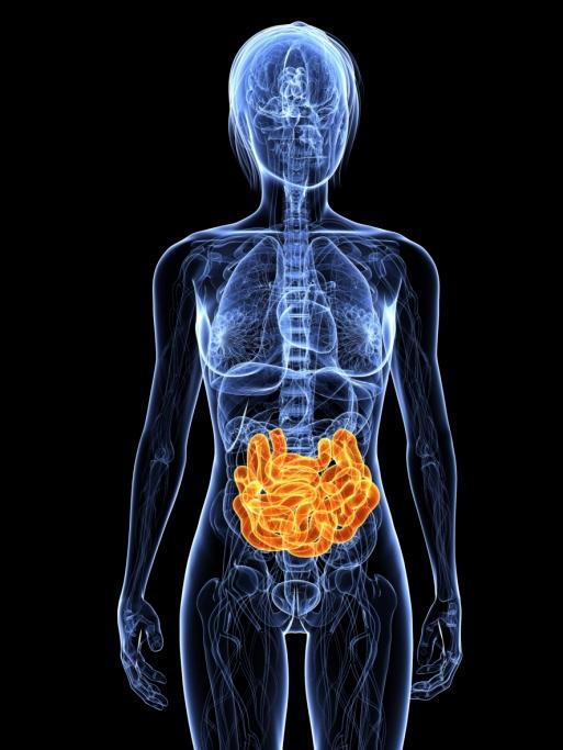 Can you tell me is Crohn's disease an autoimmune disease?