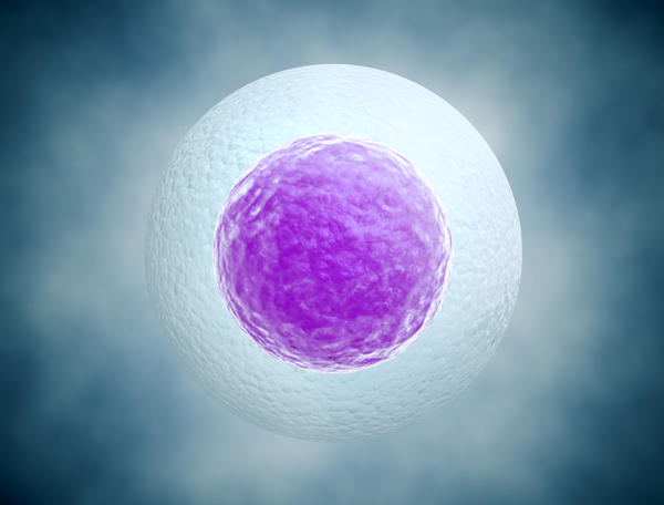 Can you have a blighted ovum if a yolk is present?