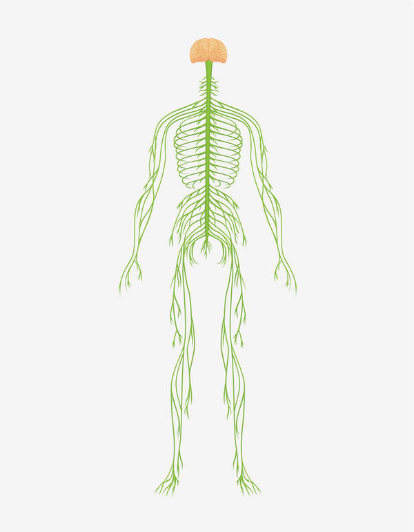 Can damage to the vagus nerve cause a tonic-clonic seizure? My seizure was 9 months after gastric volvulus surgery. I have gastroparesis.