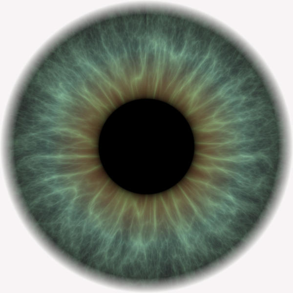 How long do dilated pupils from atropine sulfate ophthalmic last?