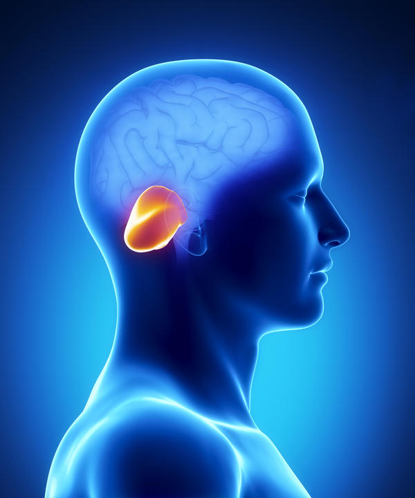 What is the definition or description of: Cerebellar degeneration?