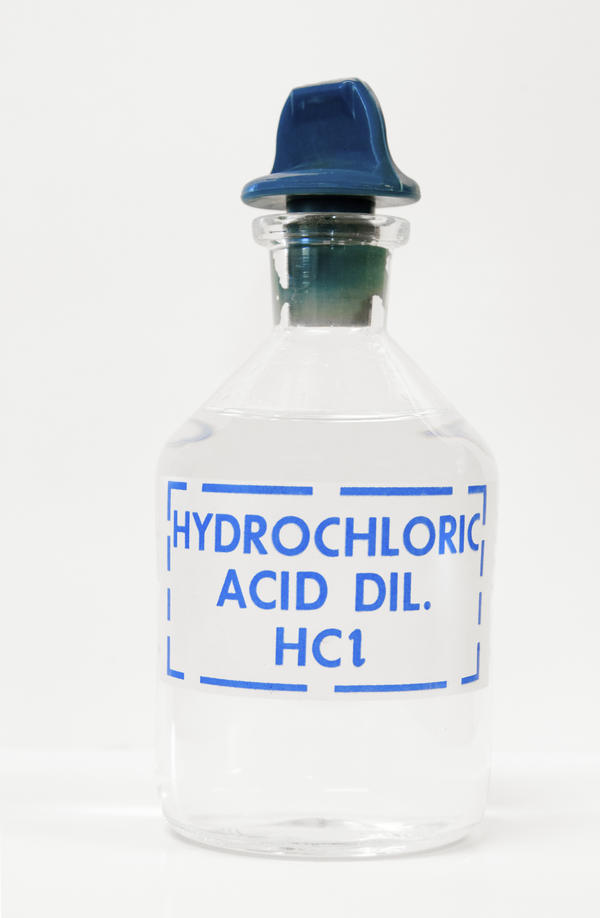 Where are hydrochloric acid and pepsin secreted?