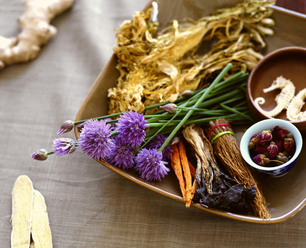 What natural herbal remedies are the best for a uti?