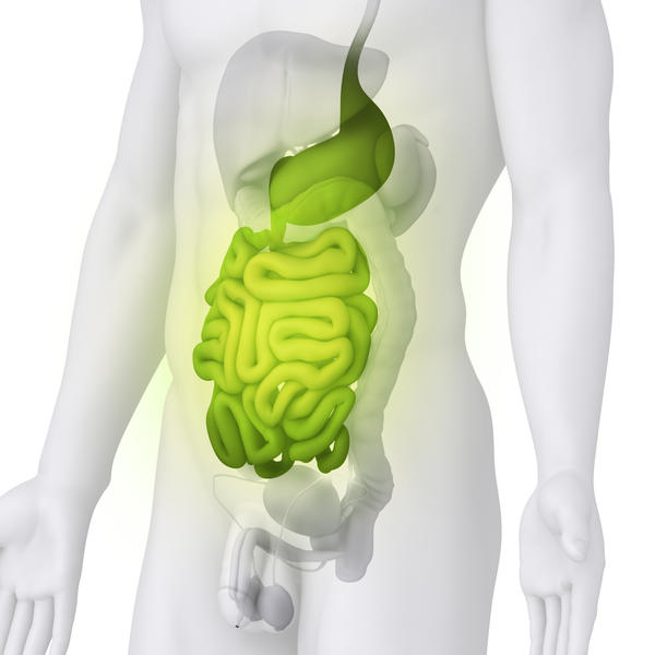 What causes hemorrhoids in the last part of the small intestine? I got a colonoscopy already