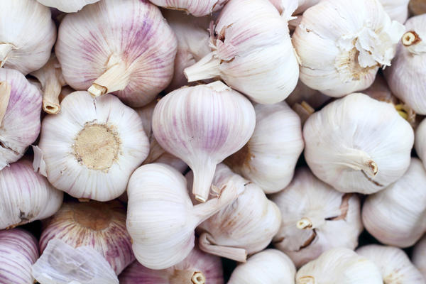 What are the health benefits for garlic for a cold?