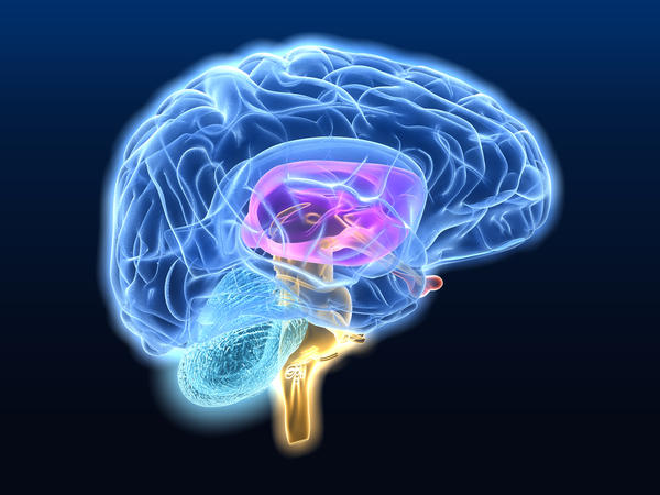 Does the lou gehrig's disease happen in or from the brain stem?
