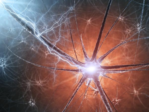 What is motor neuron disease? How does it affect you?