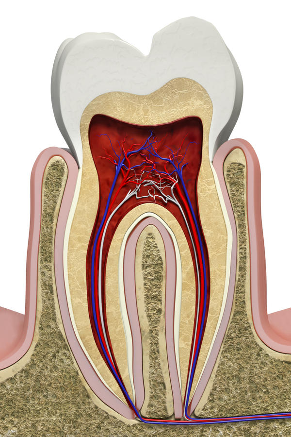 One of my left molars hurts on the side to touch, what could be wrong?