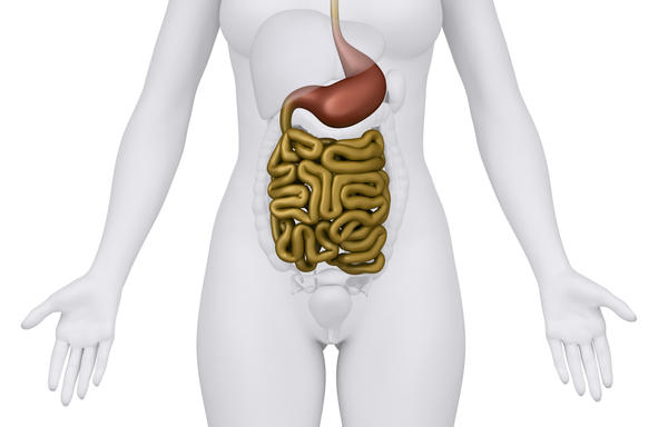 Is 'leaky gut' real? What is it, how dx'd/treated? Was told i'm ibs, feel worse/more pain after bm, burning stomach/intestines, protein worsens sxs...