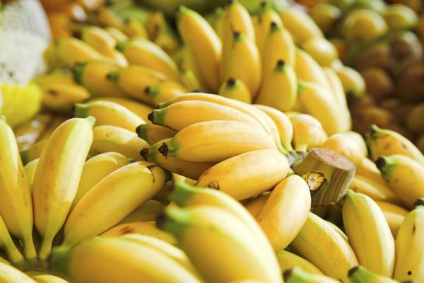 What could cause my low potassium levels?
