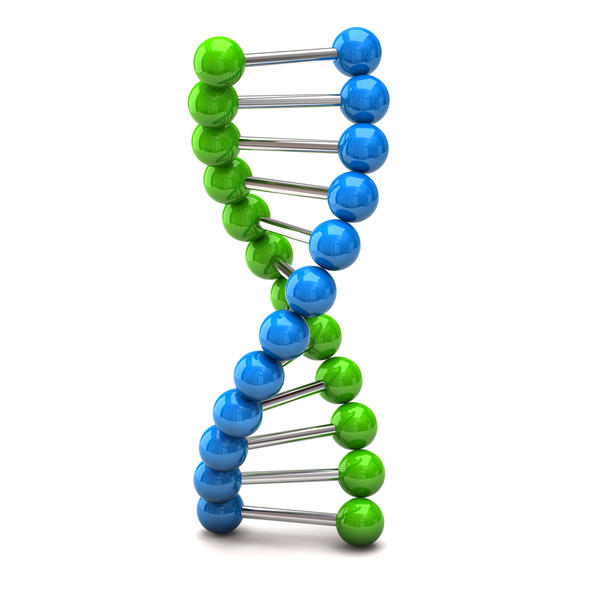 What is the human genome project and whose genome was sequenced?