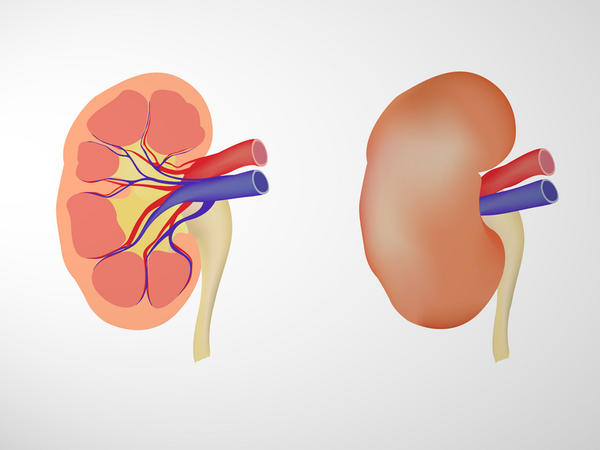 How does accupressure help in the treatment of chronic renal failure?