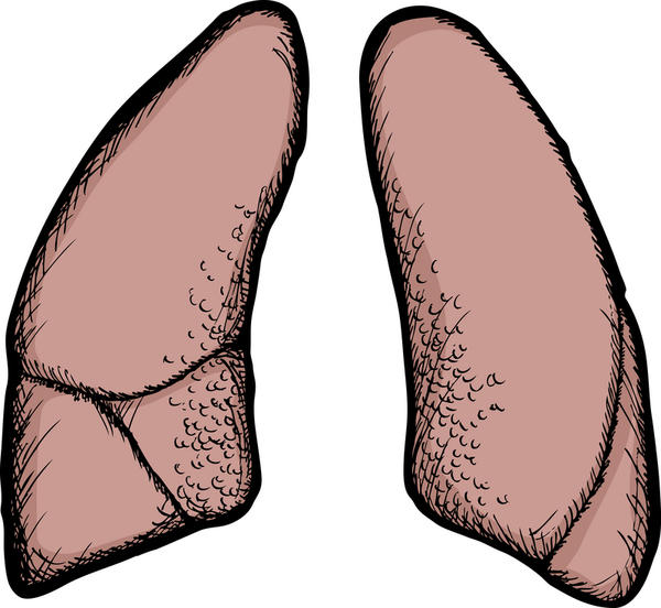 What is the definition or description of: lung symptom?