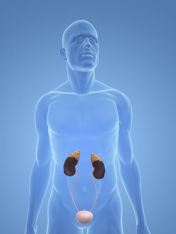 Can gall bladder pain feel like it is coming from the pancreas?