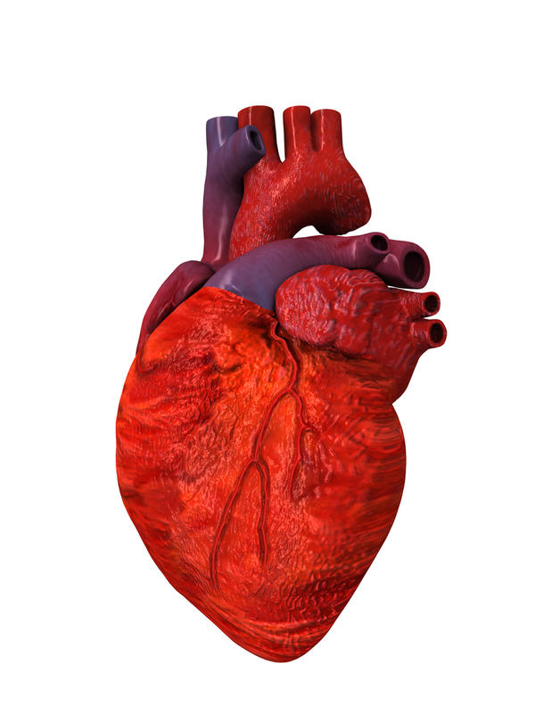 How do pericarditis myocarditis and endocarditis develop?