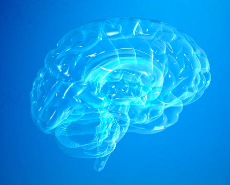 How can I tell if my prefrontal cortex was damaged?