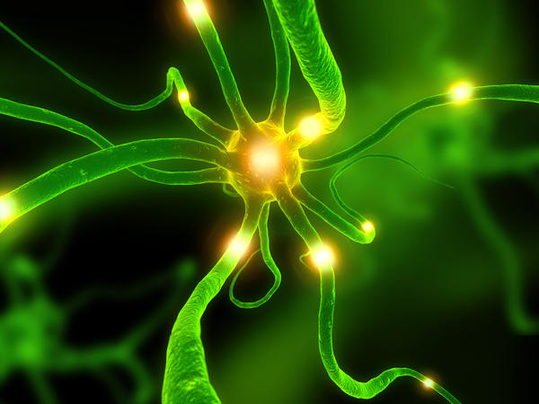 If nerve cells were attacked directly in a autoimmune disease could it cause loss of chemical neurotransmitters and electrical changes and processes ?