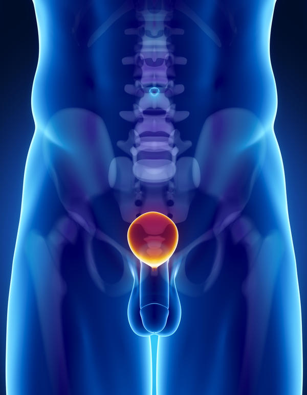 Soft tissue density midline pelvis is likely due to distended urinary