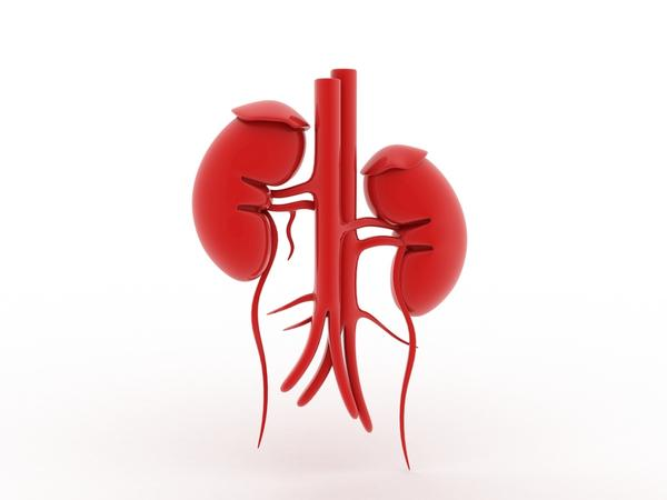 How does dehydration affect renal failure?