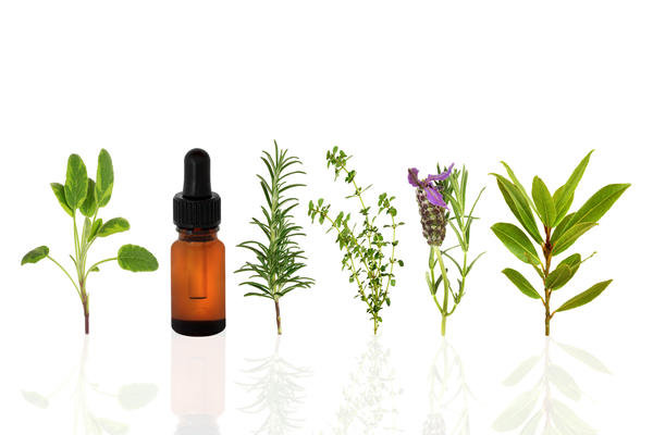 How can you acquire Frankincense essential oil?