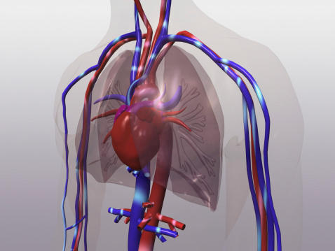 Is it true that an enlarged heart and an unfolding aorta are very danergrous?