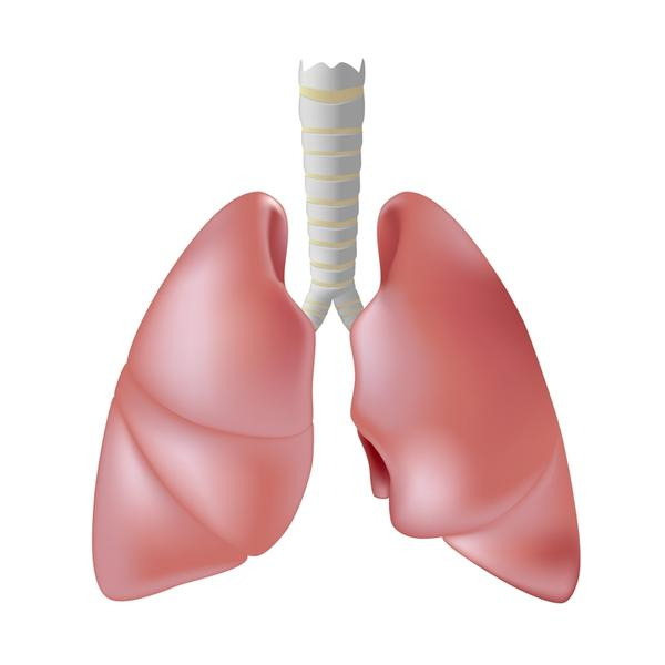How commonly does pseudomonas aeruginosa infect the lungs?