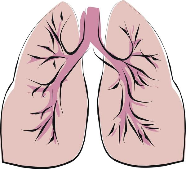 What are the different symptoms from mesothelioma and emphysema?