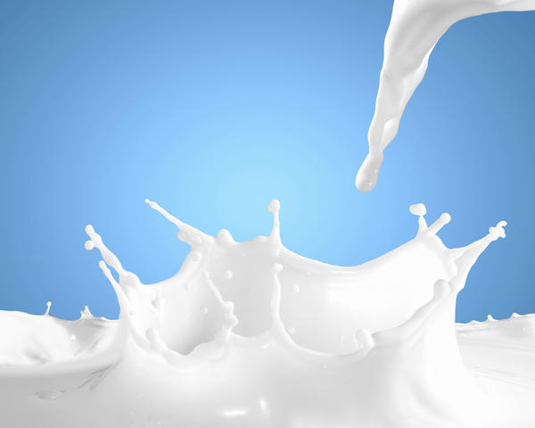 Should the following be included in the category of fluid: milk (whole or skim), yogurt, soup?