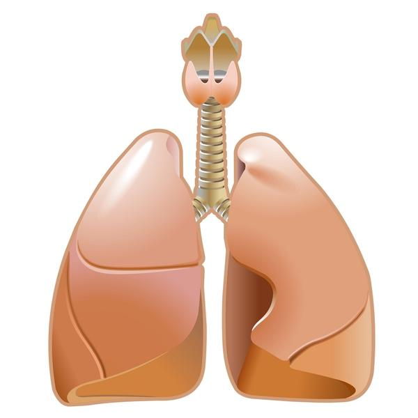 Need advice on what is the the lung infection cure for a 74 year old man who has emphysema?