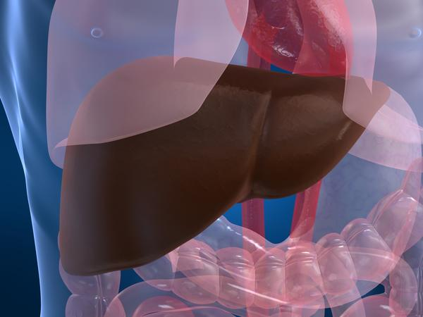 Does iron supplement irritate liver?